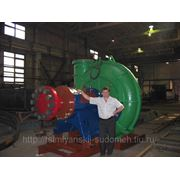 Насос грунтовый ГруТ 3800-60 проект Ц20Р-11 фото