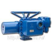 Многооборотные взрывозащищенные электропривода ГЗ-ВД.5000/12 фото