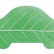 Зелёная карта фото