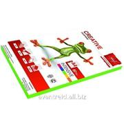 Бумага А-4 Creative Intensive, цвет зеленый фото