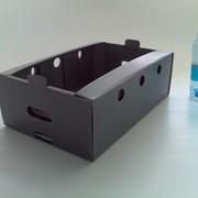 Ящики из полипропилена многоразового использования фото