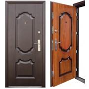 Дверь металлическая модель MD 869 фото