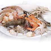 Морепродукты, креветки, кальмары, лобстеры, осьминоги фото