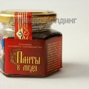 Панты в меду (с измельченными пантами) 105 грамм фото