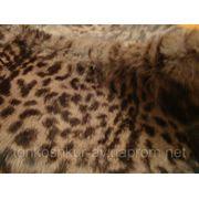 Мех одёжный воротник кролик леопард сирен.
