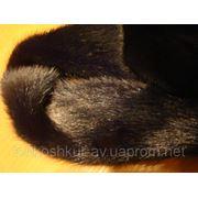 Мех натуральный норка самец чёрный фото