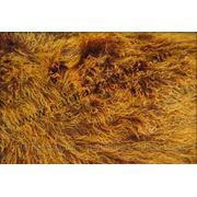 Овчина тибетская коричнево-рыжая фото