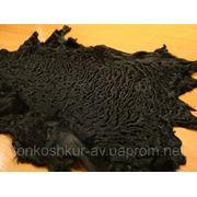 Мех каракуль чёрный фото
