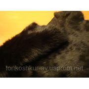 Натуральный мех Кролик черный фото