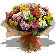 Букет из хризантем фото