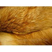 9382 Мех натуральный лиса рыжая степная фото