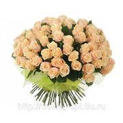 VIP букет из 101 кремовой розы фото