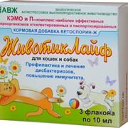 Пробиотик для животных ЖивотикЛайф фото