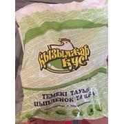 Цыплята табака Кызылжар-Кус фото