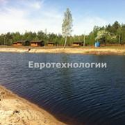 Устройство озер по Киеву и области фото