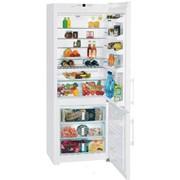 Холодильник Liebherr CN 5113 фото