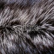 Мех чернобурки фото