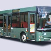 Пригородный автобус МАЗ-206 фото
