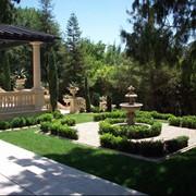 Озеленение участка. Озеленение сада, подбор и посадка растений, ландшафтный дизайн. Крым фото