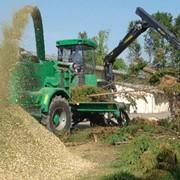 Деревопереработка, услуги по переработке отходов деревообработки, лесозаготовок и лесопиления в местах их накопления фото