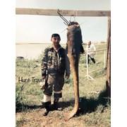 Рыбалка в Казахстане фото