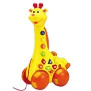 Игрушка обучающая жираф - каталка фото