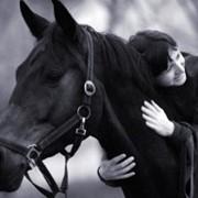 Иппотерапия (лечебная верховая езда) фото