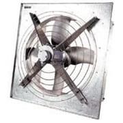 Вентилятор осевой ВО оконный птичник фото