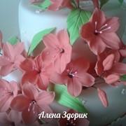 """Украшение на торты """"Сахарные цветы"""" фото"""