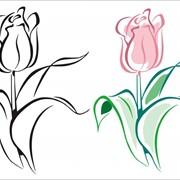 Шелкотрафаретная печать по текстилю, в Хмельницком недорого, Цена доступная фото