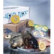 Переработка рыбной продукции фото