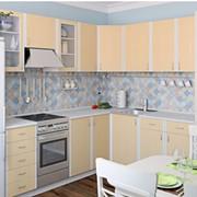 Кухня с фасадом софтформинг - Северный клен фото