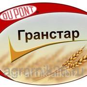 Гербицид ГРАНСТАР ПРО, ВДГ(750 г/кг) фото