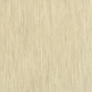 Обои виниловые на флизелиновой основе горячего тиснения 45-006-06 фото
