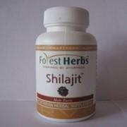Мумиё Шиладжит Форест Хербс ( Shilajit Forest Herbs ) 60 капсул фото