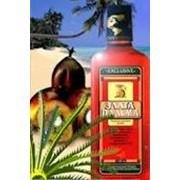 """Масло красной пальмы """"Злата Пальма"""" фото"""