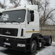 МАЗ-5440B5-8420-031 седельный тягач фото