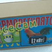 Терморегулятор для инкубатора ТР 2.0/220 фото