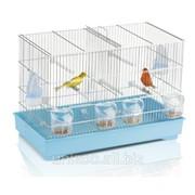 Клетка для канареек и волнистых попугаев Imac Cova 55 фото