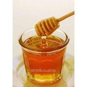 Мёд степной оптом и в розницу фото