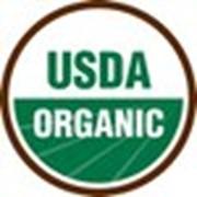 """Маркировка пищевой продукции согласно европейским стандартам """"Bio"""", """"Organic"""", """"Eco"""" фото"""