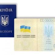 Получение паспортов фото