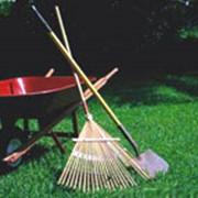 Очистка газона фото
