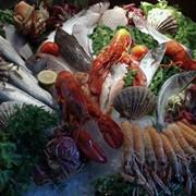 Коктейль из морепродуктов фото