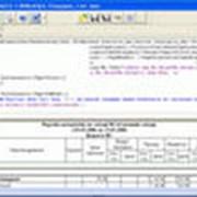 Пользовательский генератор отчетов фото