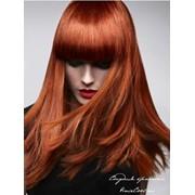 Биоламинирование волос, Ламинирование волос (Ламинация) от 4000 тг, в алматы фото