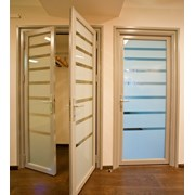 Стеклянные интерьерные двери в алюмин. обвязке  фото