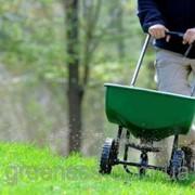 Подкормка газона удобрениями фото