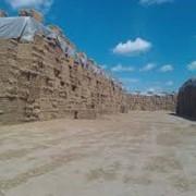 Солома в тюках пшеница Одесса фото