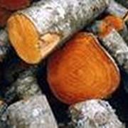 Ольховые дрова фото